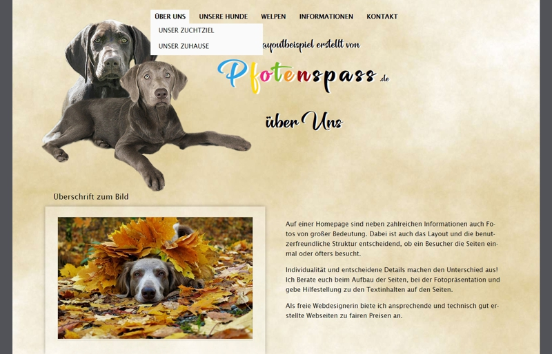 Homepagevorlage-Template-05-03-website