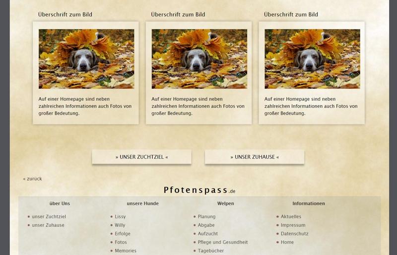 Homepagevorlage-Template-05-03-website2