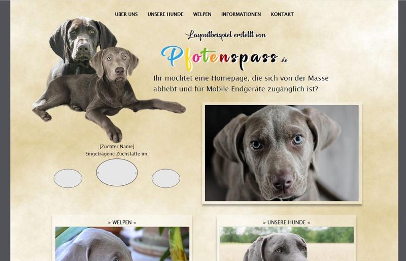 Homepagevorlage-Template-05-03