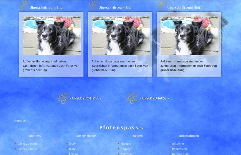 Homepagevorlage-Template-05-04-website2