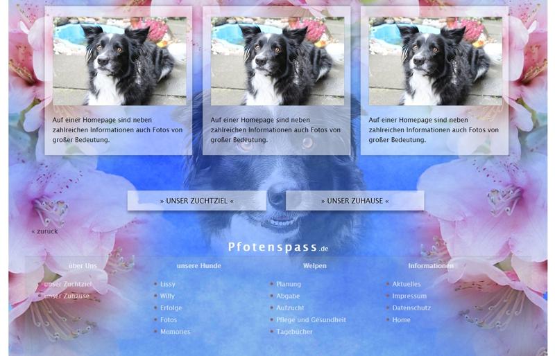 Homepagevorlage-Template-06-01-website2