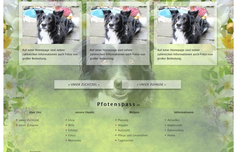 Homepagevorlage-Template-06-02-website2
