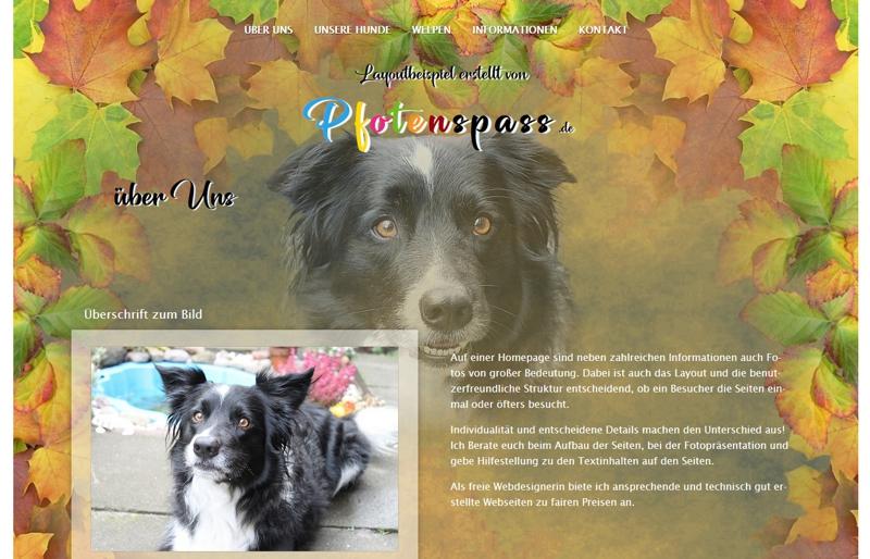 Homepagevorlage-Template-06-03-website