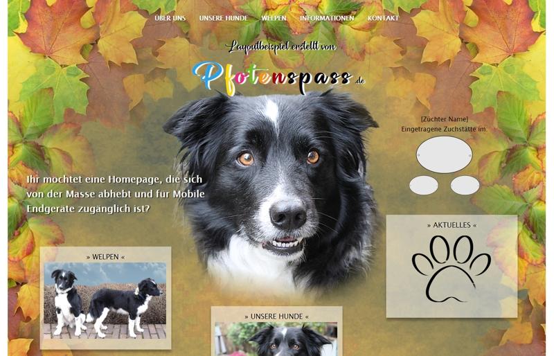 Homepagevorlage-Template-06-03