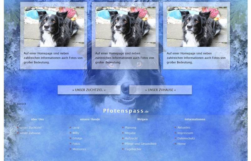 Homepagevorlage-Template-06-04-website2