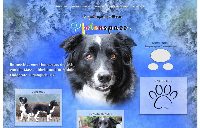 Homepagevorlage-Template-06-04