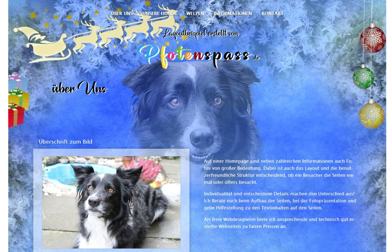 Homepagevorlage-Template-06-05-website