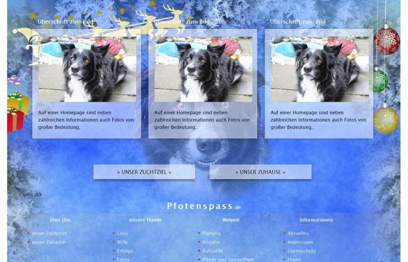 Homepagevorlage-Template-06-05-website2