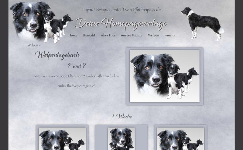 Homepagevorlage-Template-08-02-weitere-Seiten
