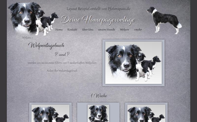 Homepagevorlage-Template-08-06-weitere-Seiten