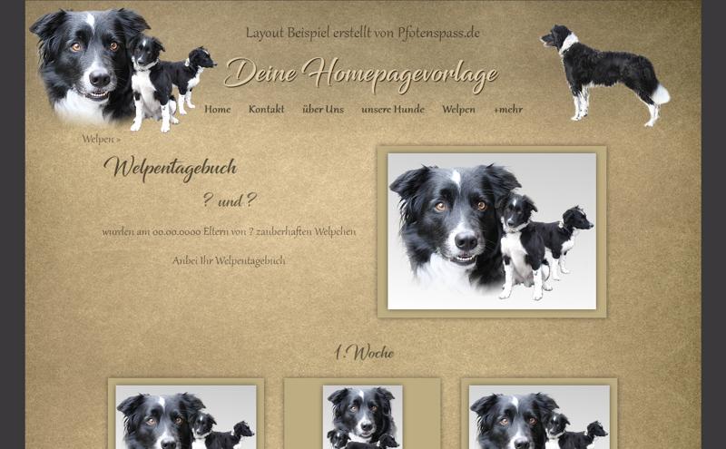 Homepagevorlage-Template-08-07-weitere-Seiten