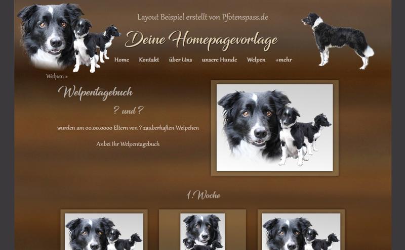 Homepagevorlage-Template-08-23-weitere-Seiten