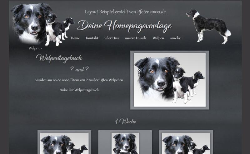 Homepagevorlage-Template-08-24-weitere-Seiten