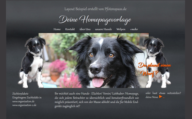 Homepagevorlage-Template-08-24