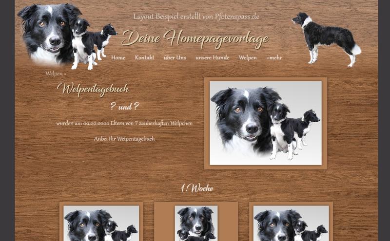 Homepagevorlage-Template-08-25-weitere-Seiten
