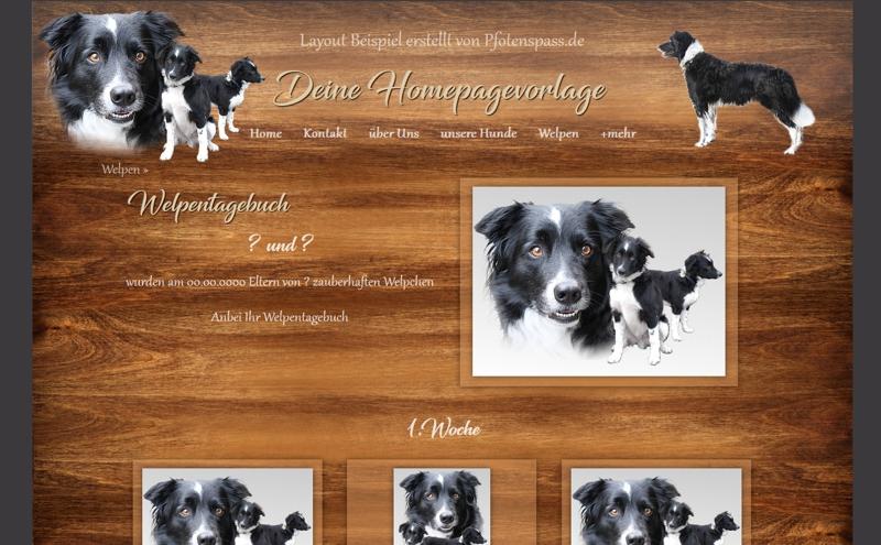 Homepagevorlage-Template-08-26-weitere-Seiten