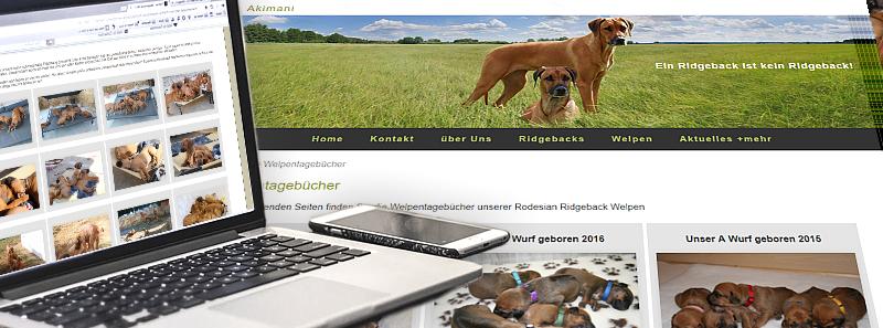 Webseitenpflege für Hunde Züchter und Besitzer Pfotenspass