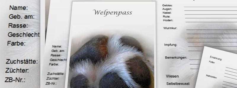 Welpenpass-Pfotenspass3