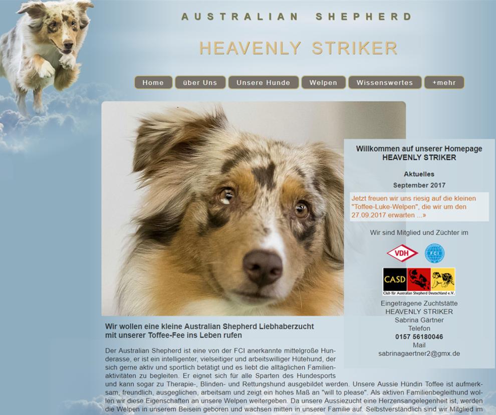 Australien-Shepherd-Heavenlystriker