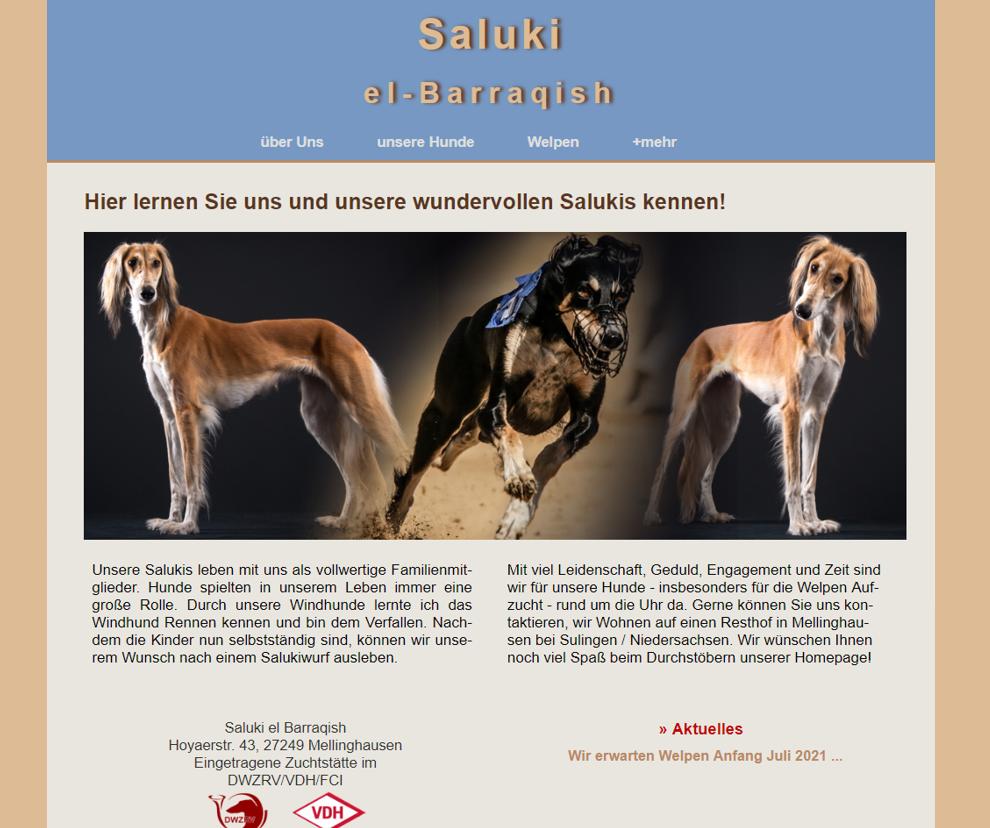 Saluki-el-barraqish