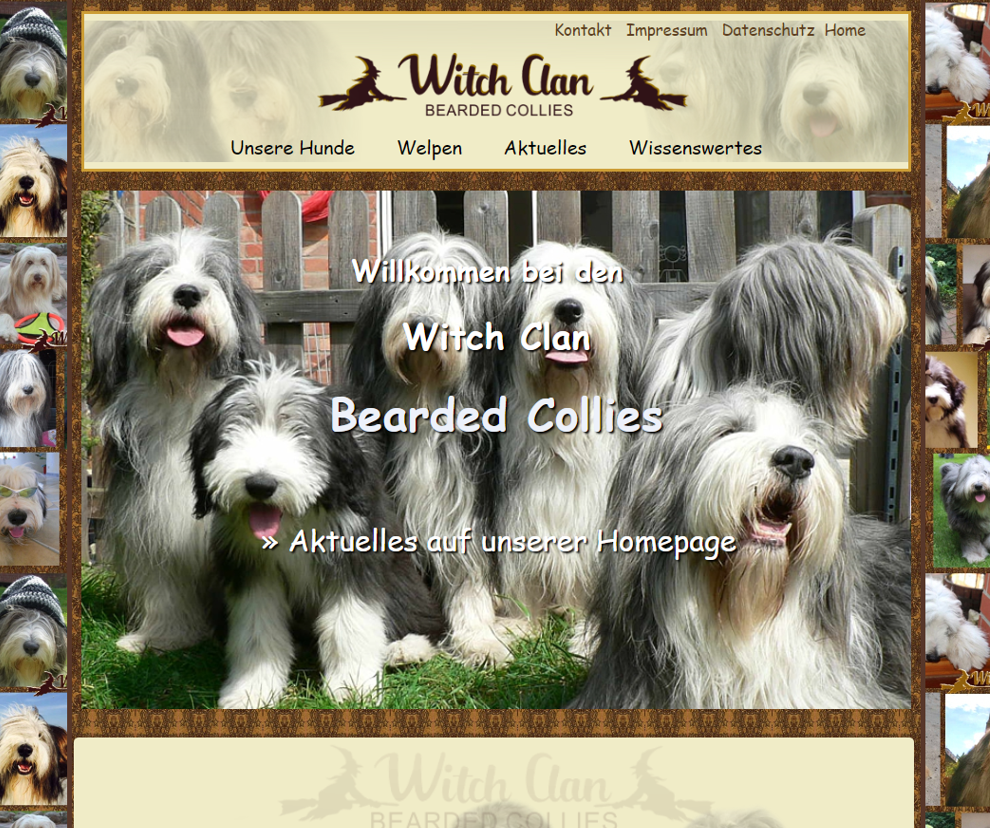 Witchclan-Bearded-Collies