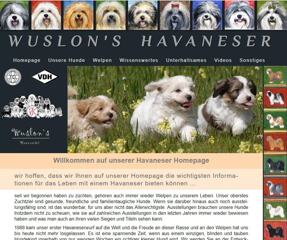 Wuslons-Havaneser