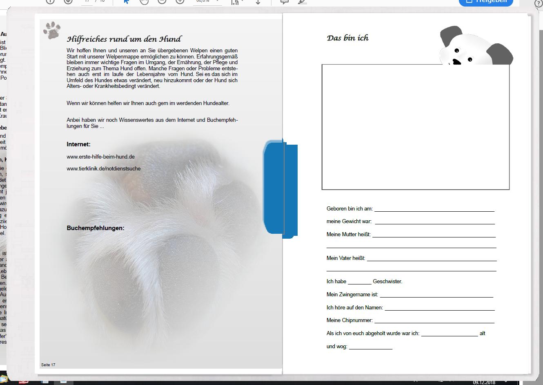 Welpenmappe-universell-klein-Seite-17-erstellt-von-Pfotenspass