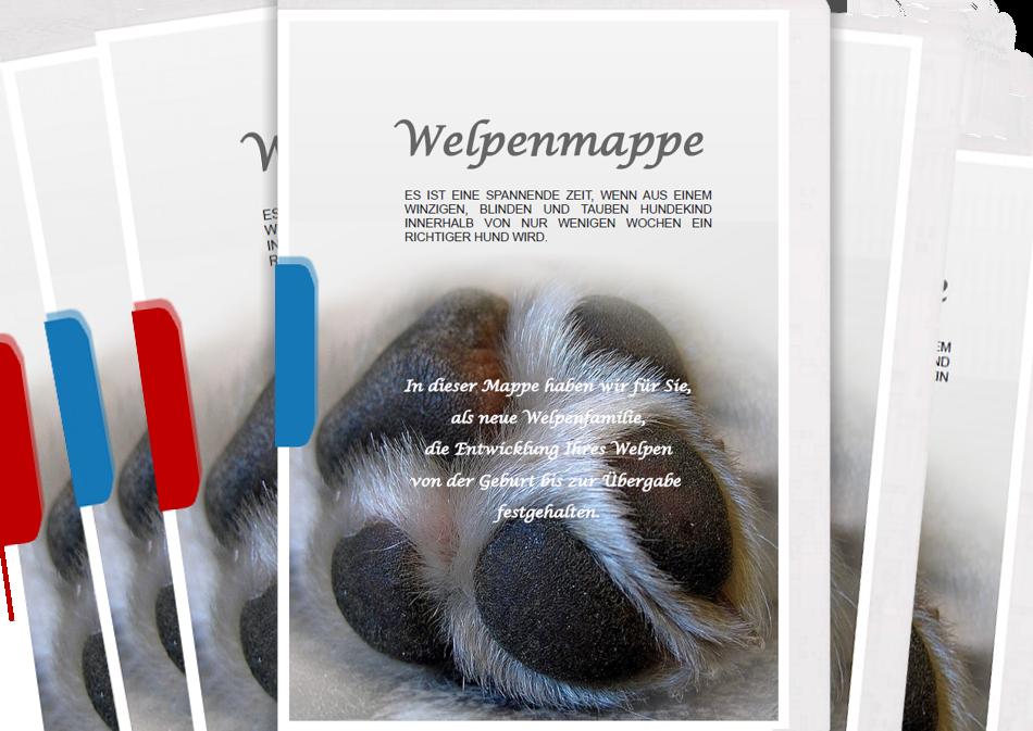 Welpenmappe-zum-selbst-ausdrucken-Pfotenspass-universelle-Titelseite
