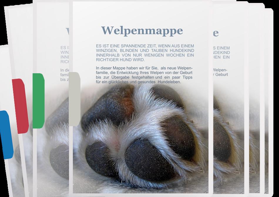 Welpenmappe-zum-kauf-Pfotenspass-universell-Titelseite