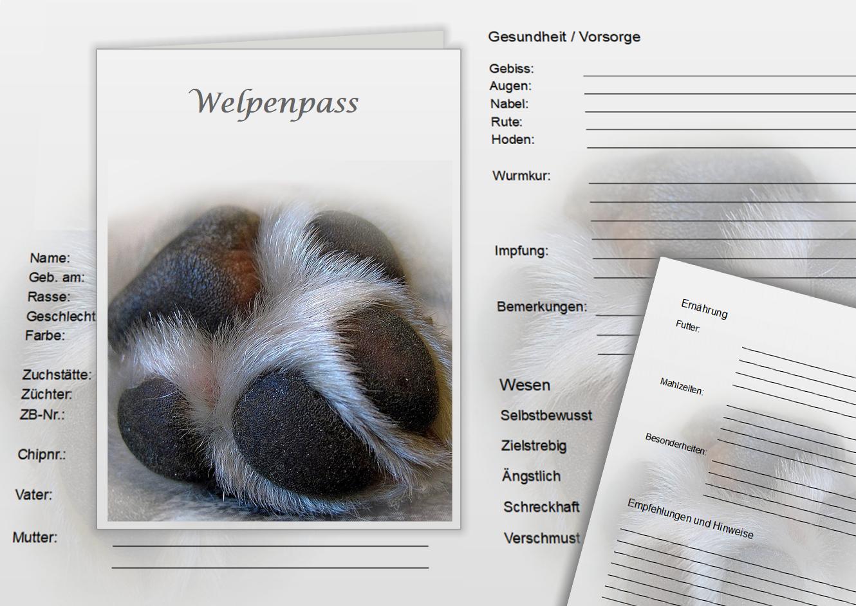 Welpenpass-mit-pfote-erstellt-von-Pfotenspass