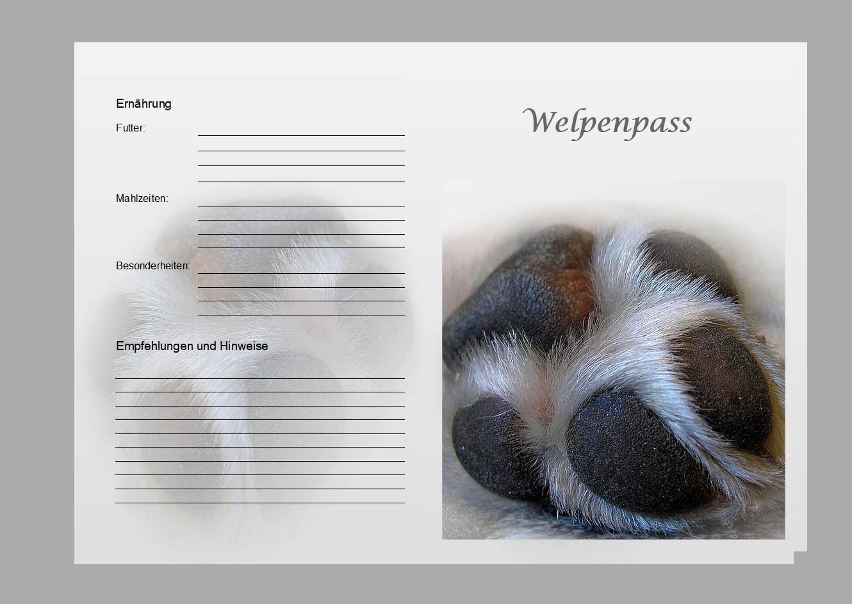 Welpenpass-pfote-vorne-erstellt-von-Pfotenspass